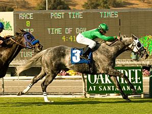 California Flag wins the 2009 Morvich.