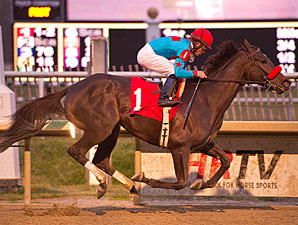 Called to Serve wins the 2012 Broad Brush.