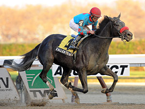 Called to Serve wins the 2012 Discovery.