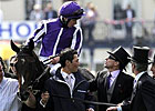 Camelot Doing Well Following Colic Surgery