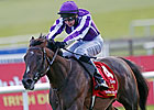 British Classic Winner Camelot Retired