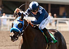Powerful Cast Set for Triple Bend Handicap