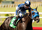 Camp Victory, Coil to Battle in Pat O&#39;Brien