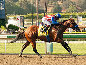 Can the Man wins the 2014 Affirmed Stakes.