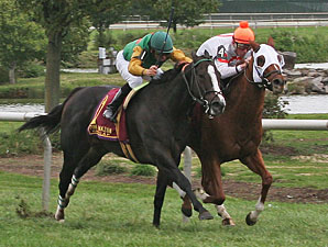Canadian Ballet wins the 2009 Turf Amazon.
