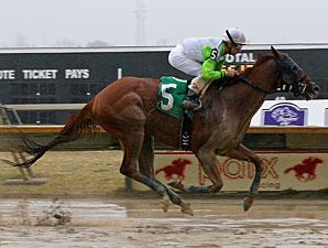 Candyman E wins the 2013 Bensalem Stakes.