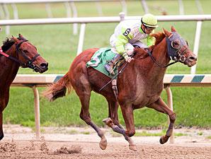 Candyman E wins the 2011 De Francis Dash.
