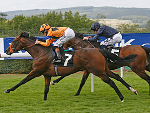 Canford Cliffs Tops 'Rip' in Sussex Stakes