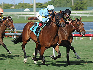 Can'thelpbelieving - Maiden Win, January 11, 2014.