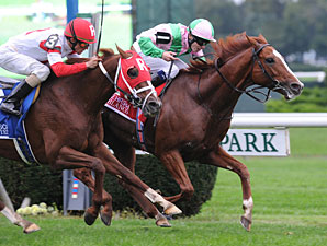 Cape Blanco Takes Turf Classic in a Dogfight