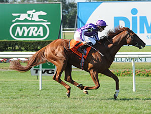 Cape Blanco, Gio Ponti Meet Again in Million