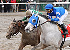 Vineyard Haven Favored in De Francis Dash