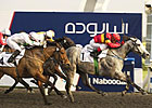 Al Shindagha Sprint Draws Full Field of 14