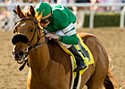 Caracortado, First Dude Work For Preakness