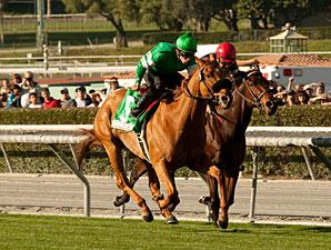 Caracortado wins the 2011 Sunshine Millions Turf.