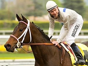 Filly Carlsbad Suffers Fatal Breakdown