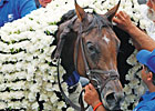 You Make the Call: 2010 Belmont