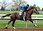 Carpe Diem Works for Jet-Setting Pletcher