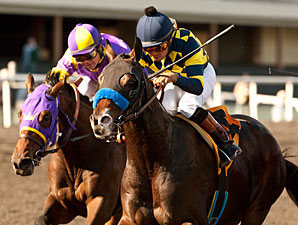 Baffert Quartet Likely for CashCall Futurity