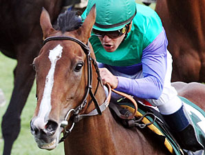 Casablanca Smile wins the Rood and Riddle Dowager Stakes.