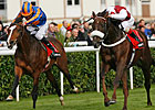 Casamento Charges to Victory in Racing Post