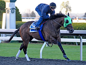 Cash Refund works at Keeneland on October 21, 2010.