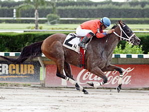 Cash Rules wins the 2012 Band Is Passing Stakes.