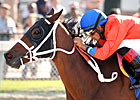 Harlan&#39;s Holiday Stakes Attracts Top Runners