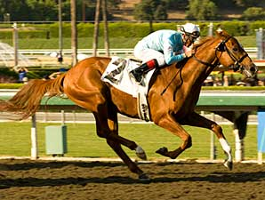 Casino Drives wins at Oak Tree on Oct. 12, 2008.