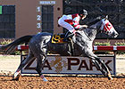 Speedy Cassatt Dusts Rivals in Zia Park Oaks