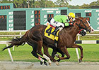 Juvenile Catalina Red Sets Tampa Track Mark