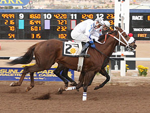 Cattleman Prospect wins the 2009 Johnie L. Jamison Stakes.