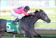 Illinois Derby Next for Cause to Believe