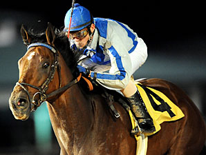 Cease Ends Stakes Drought in Maxxam Gold Cup