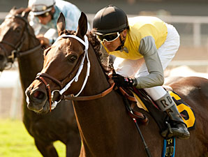Celtic Princess Takes Royal Heroine Mile