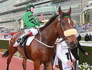 Certerach wins the Dubai Gold Cup March 29.
