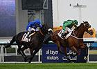 Certerach Denies Cavalryman in Dubai Gold Cup