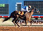 Jockey Medellin Wins Seven Races at Zia