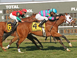 Chamberlain Bridge Heads Turf Sprint at CD