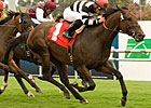 Champ Pegasus Flies Late for Clem Hirsch Win