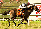 Champ Pegasus Takes Wing in Del Mar Handicap