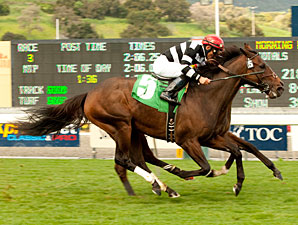 Del Mar Mile Attracts Champ Pegasus