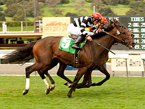Champ Pegasus wins the 2011 San Luis Obispo.
