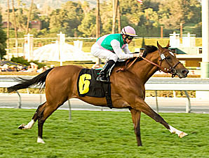 Champs Elysees overpowers the opposition in the San Marcos.