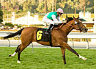 Elkhorn: Champs Elysees Tries Keeneland