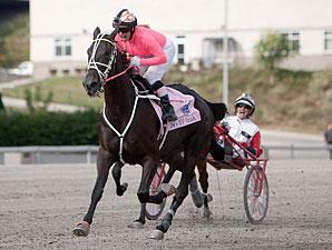 Sutherland-Kruse Sets Under-Saddle Mark
