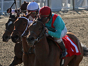 Chantilly Nayla Tops Field in Arlington Oaks
