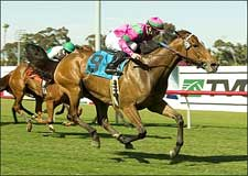 Charm the Giant Thunders to Wilshire Win