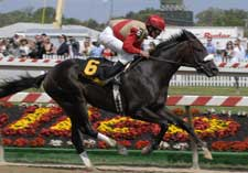 No Surprise: Matz Colt Wins Inuaugural Barbaro Stakes