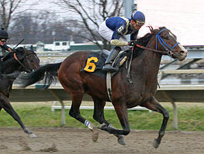 Cherokee Country wins the 2009 Valley Forge.